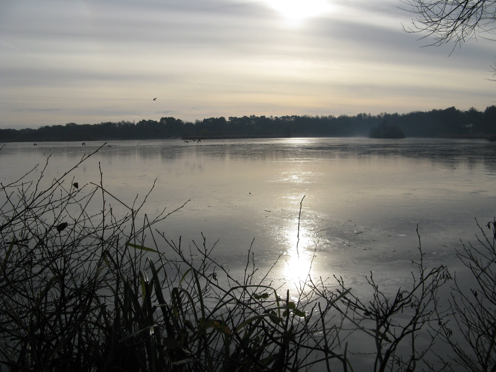 fleet-pond-iced-over