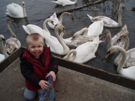 feeding-the-ducks-fleet-2-small