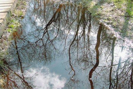 fps-photo-comp-2008-007