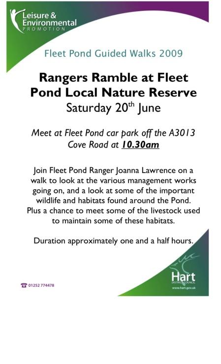 rangers ramble poster sm