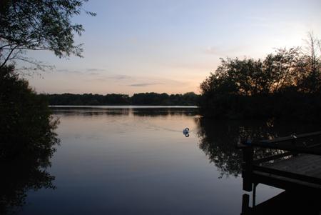 Pond At Twilight