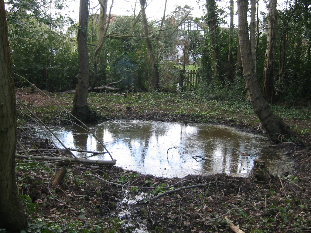 The large stew pond in March 2007