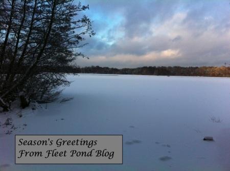pond-snow-txt-2010-sm