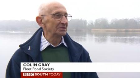 bbc c gray
