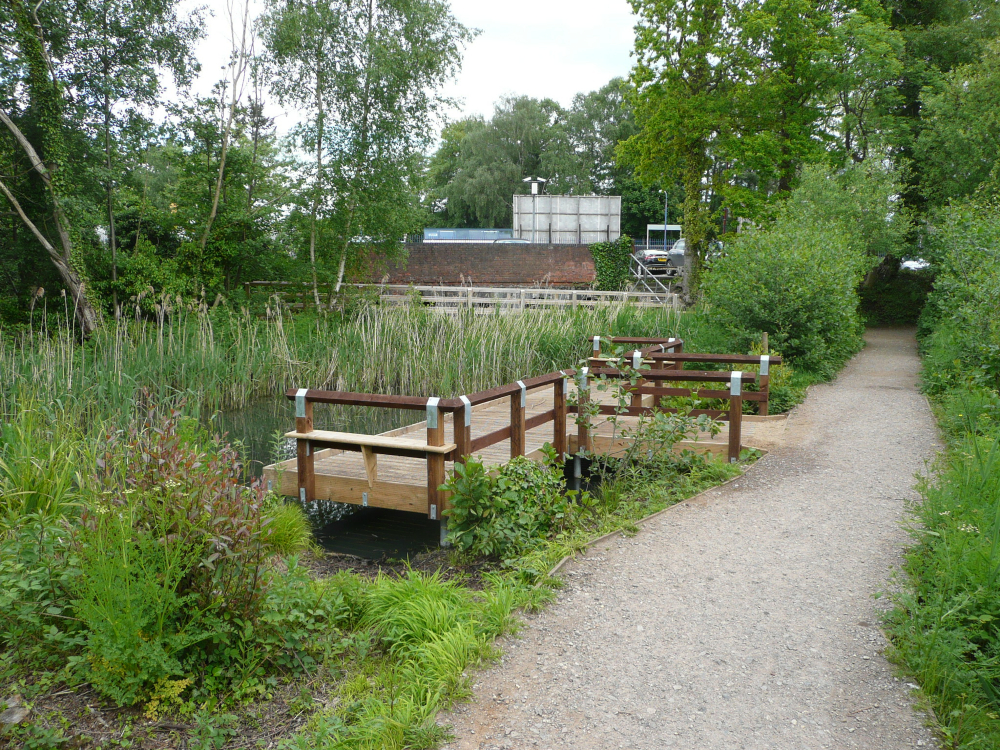 Great Photos Of The Pond - The 2013 Competition (4/5)