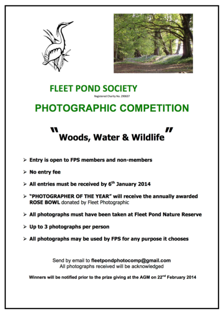 Photo Comp Poster 2013 b