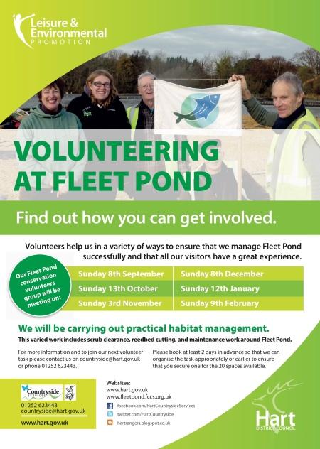 Volunteering FP 01