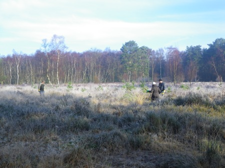 2014-01-20_Wet Heath