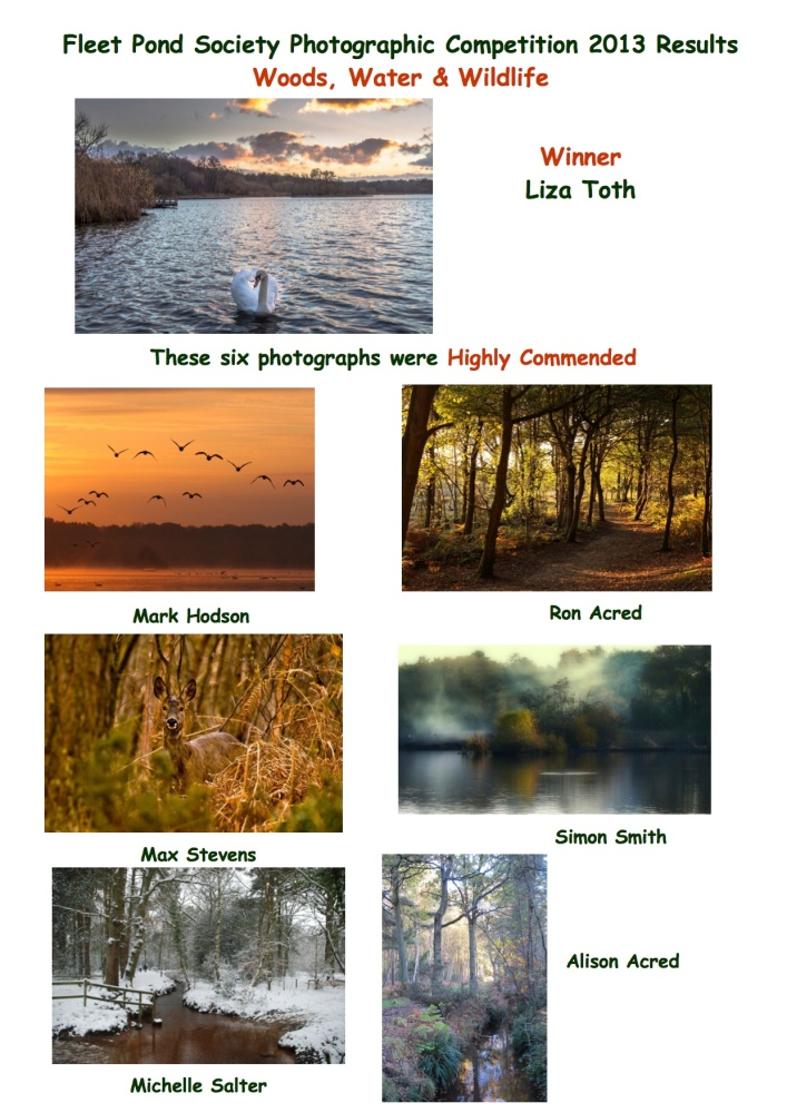 Great Photos Of The Pond - The 2013 Competition (3/5)
