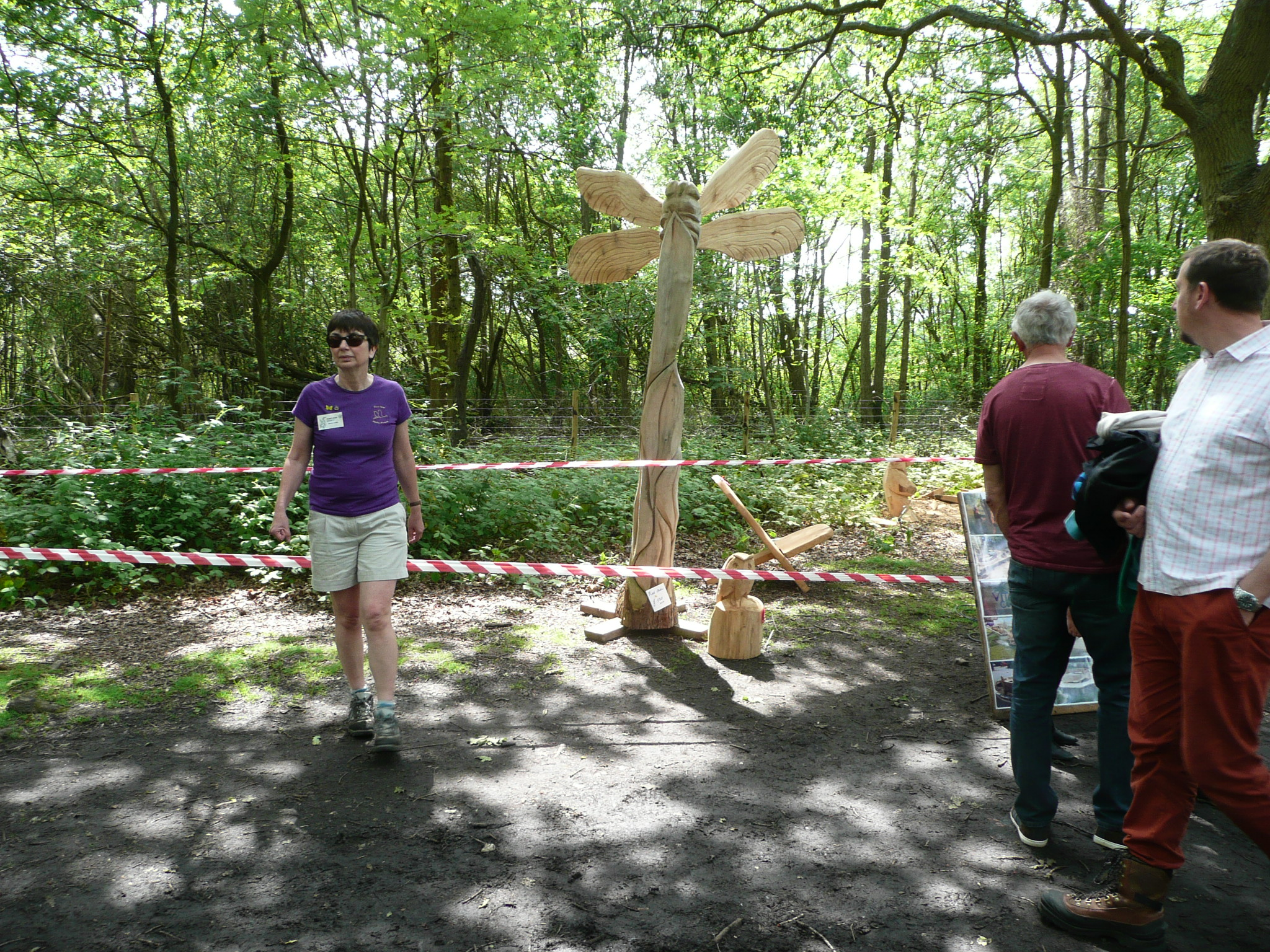 2014-05-31_WD Carving Dragonfly