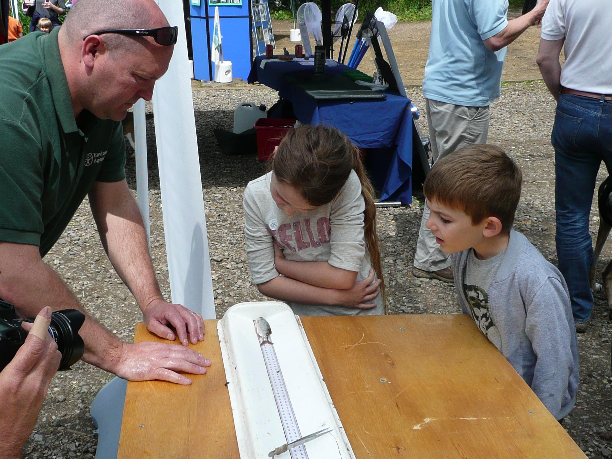 2014-05-31_WD Fish Measuring 2