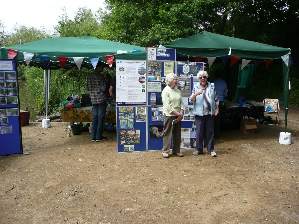 Photos From Fleet Pond Wildlife Day 2014 (4/6)