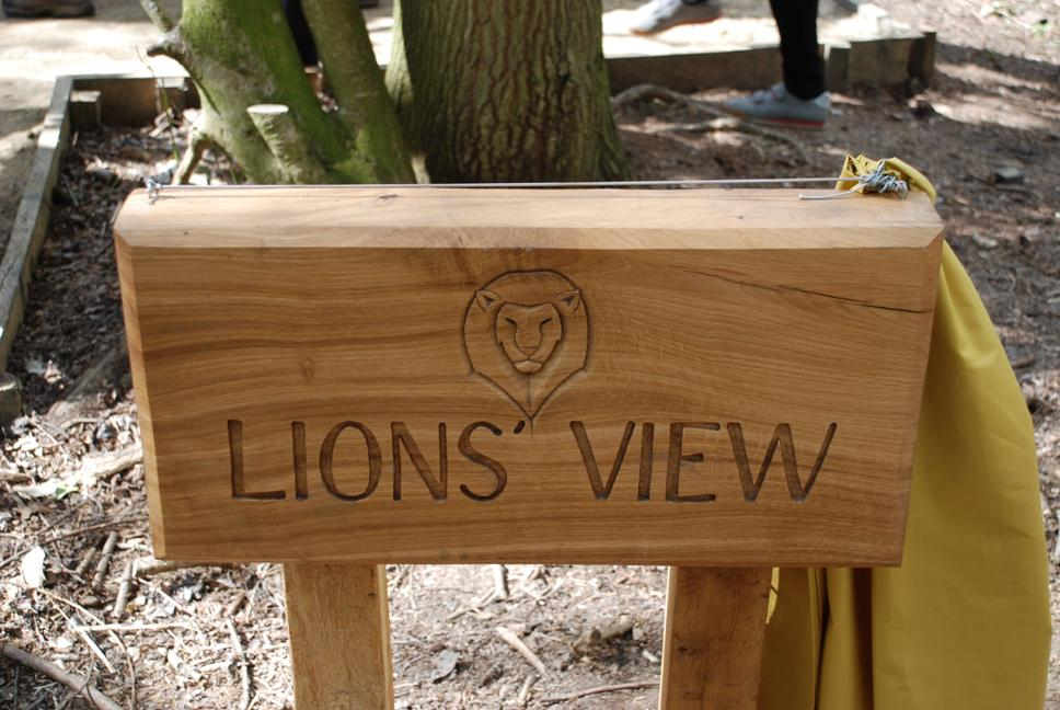 lions-view-board-2014