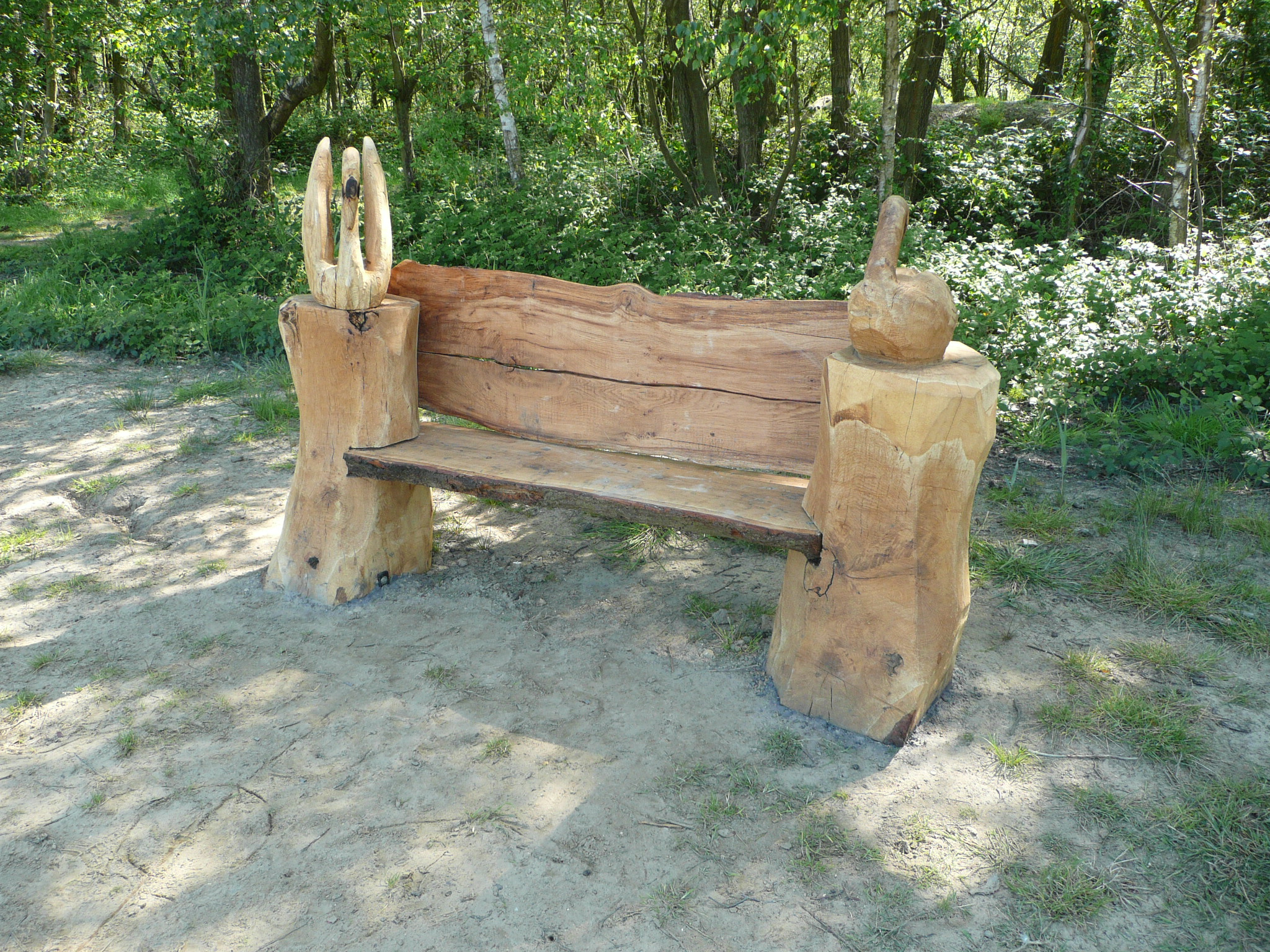 The eye catching benches at sandy bay fleet pond