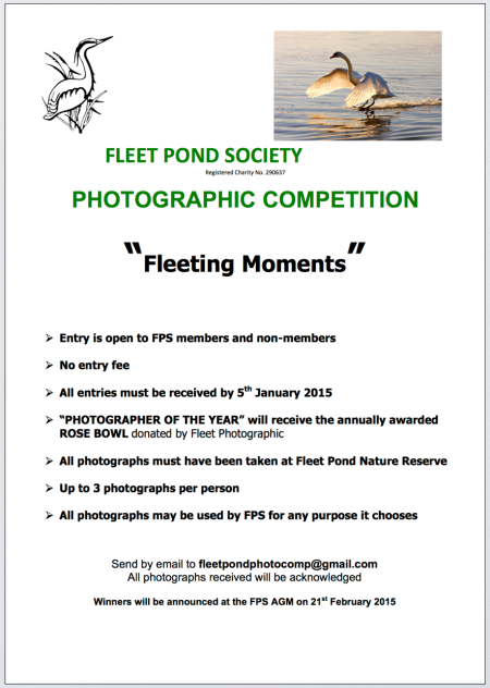 FPS Photo Comp 2014 b