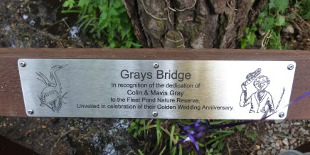 2015-05-20_grays bridge 1