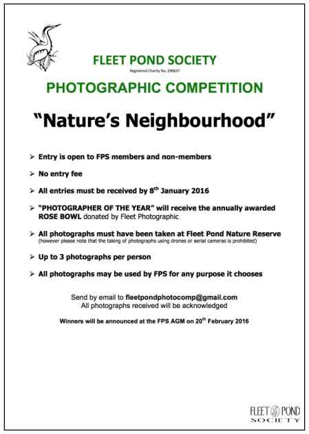 FPS Photo Comp Poster b 2016