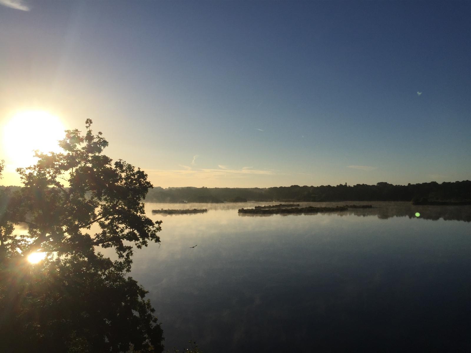 Fleet Pond at Dawn s