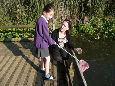 Pond Dipping Practice s