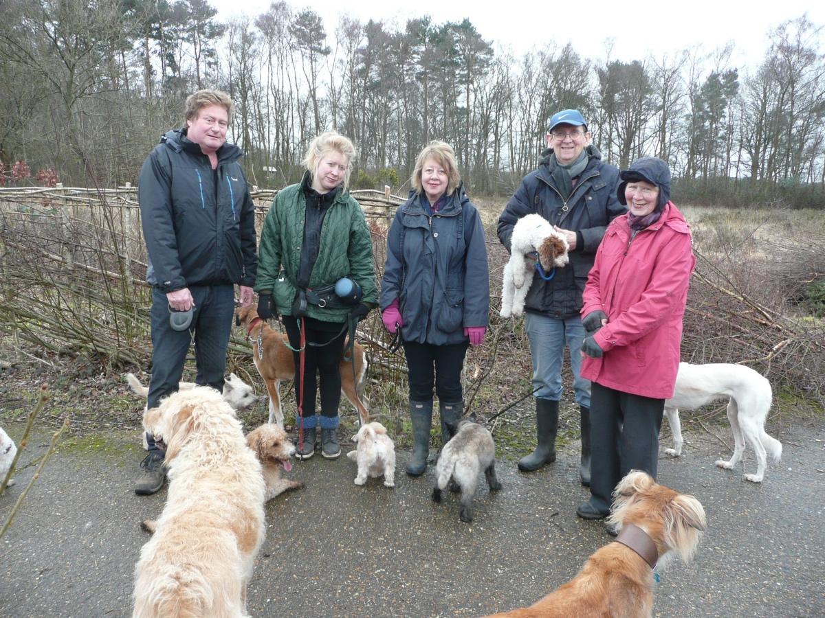 2016-02-05_dog walkers copy