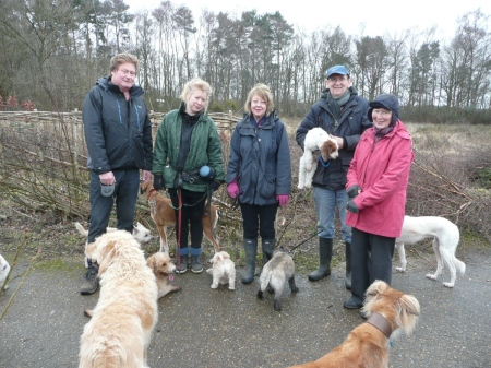 2016-02-05_dog walkers copy