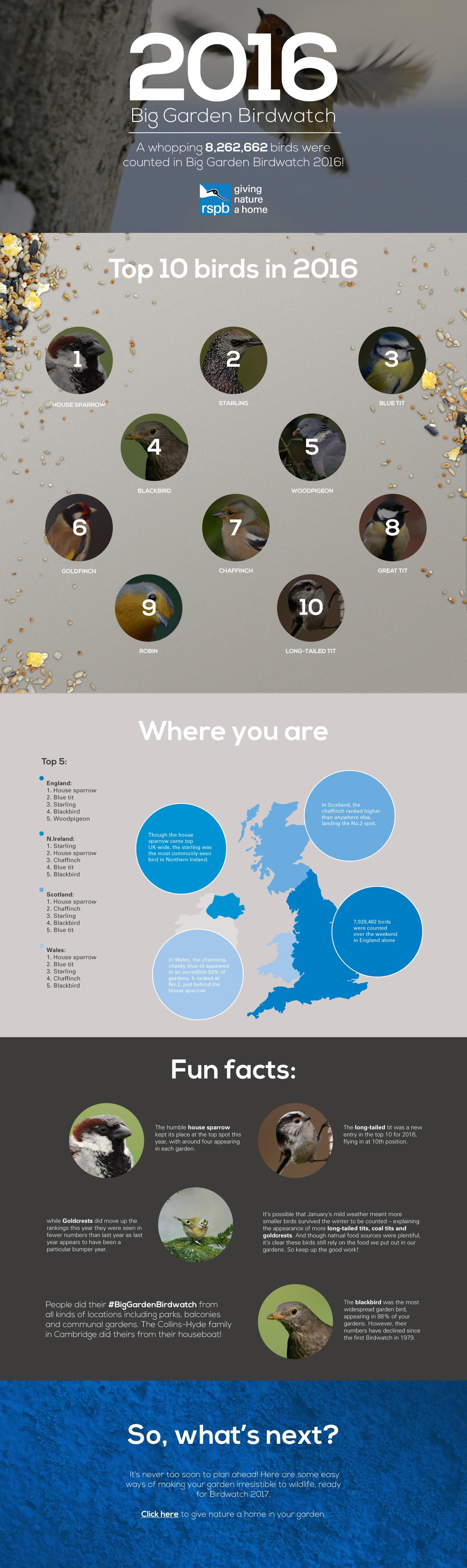 Infographics_160329