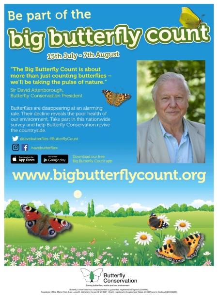 ButterflyPoster2016